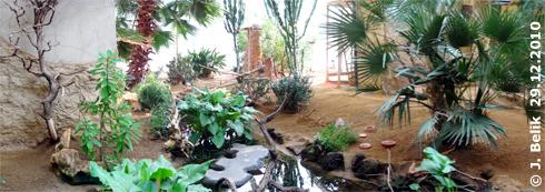 Blick auf Wasserstelle und Wintergarten (hinten), Savanne, 29. Dezember 2010