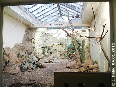 Blick in die Freiflughalle Wüste vom Eingangsraum aus, rechts unten sind die Schlafhöhlen für die Kugel-Gürteltiere, 4. Jänner 2011