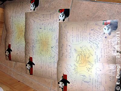 Die Geburtstagskarten für Fu Long, 25. August 2011