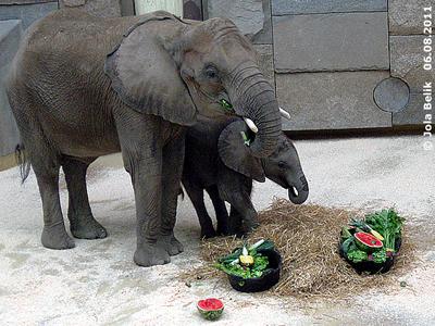MAma NUmbi ist sichtlich begeistert von den Leckereien! Tuluba und Numbi, 6. August 2011