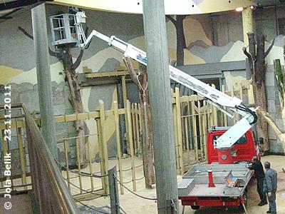 ... und diverse andere Arbeit in luftiger Höhe an der Decke des Hauses durchgeführt, , 23. November 2011