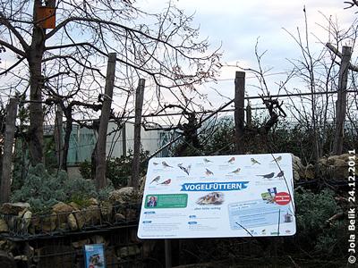 Info-Tafel bei der Vogel-Futterstation, 24. Dezember 2011