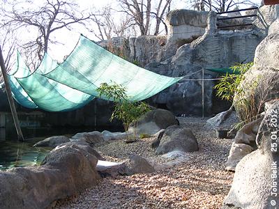 Anlage der Seehunde und Brillenpinguine, Zoo Budapest, 25. Jänner 2012