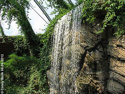 Wasserfall, Grüne Pyramide, Sóstó Zoo, 6. Juni 2012
