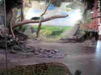 Anlage Jaguare