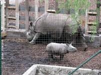 Zoo Pilsen, 15. April 2014