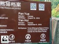 Pan Yue und Yan Hui