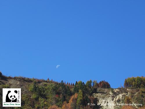 Mond Gengda