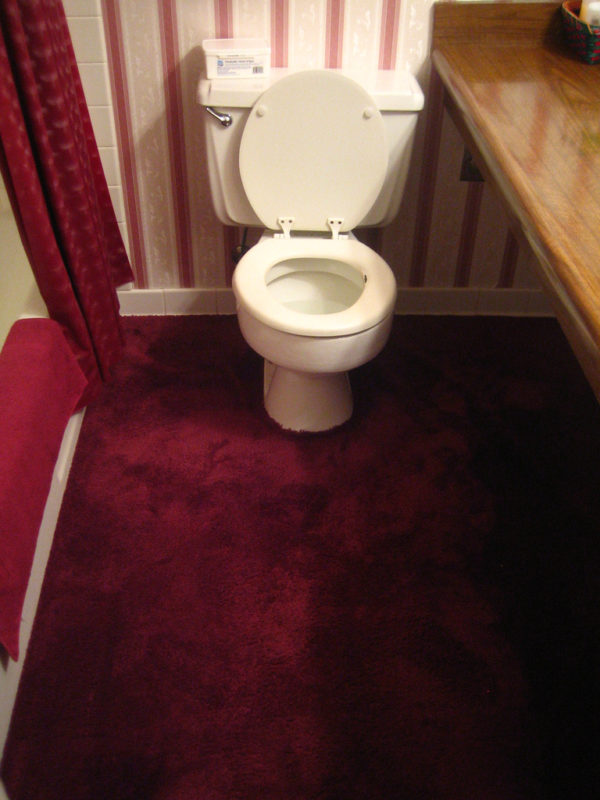 carpet-bathroom-home-why