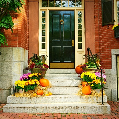 How to improve your curb appeal in the fall
