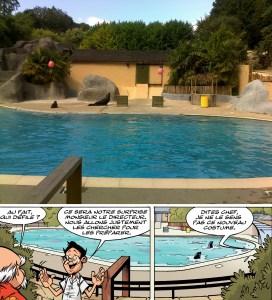 Zoo de pont scorff 05
