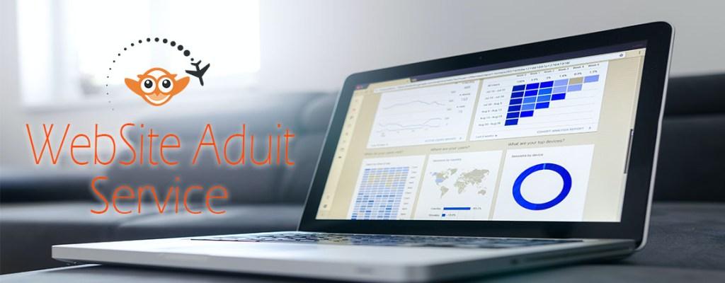 Website Audit Service || Zoo info Tech