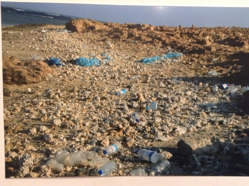 Plastic pollution on a non-tourist beach