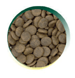Mangus del Sole - Dog Grain Free Salmone Trota Patata Dolce. 6kg