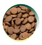 Mangus del Sole - Dog Grain Free Pollo Patata Dolce. 12kg