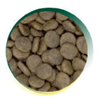Mangus del Sole - Dog Grain Free Senior Trota Salmone. 6kg