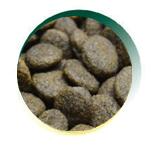 Mangus del Sole - Dog Grain Free Tonno Salmone Patata Dolce. 12kg