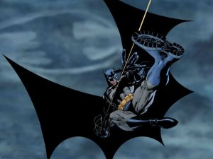 Batman – zipline