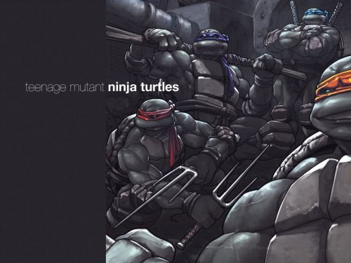 Teenage mutant ninja turtles – lookin cool