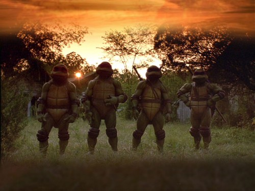 Teenage Mutant Ninja Turtles At Sunset