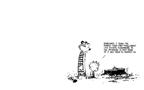 calvin and hobbes – intelligent life