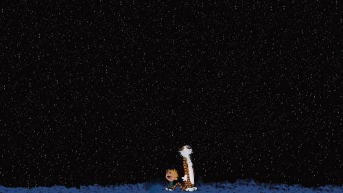 calvin and hobbes look at the stars