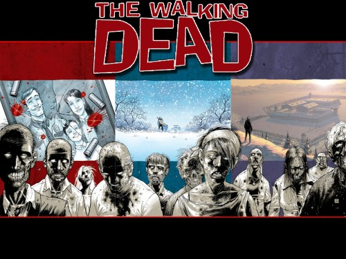 walking dead – overview