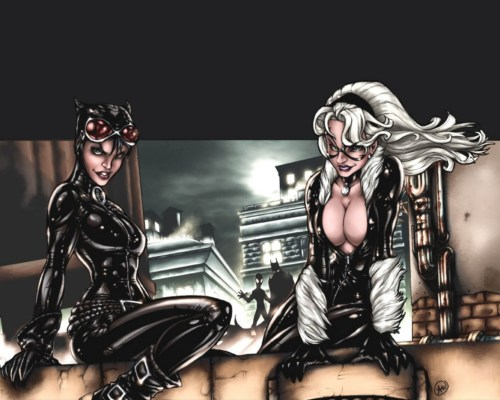 catwoman and black cat