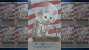 Mr Pebbles- First Cat In Space