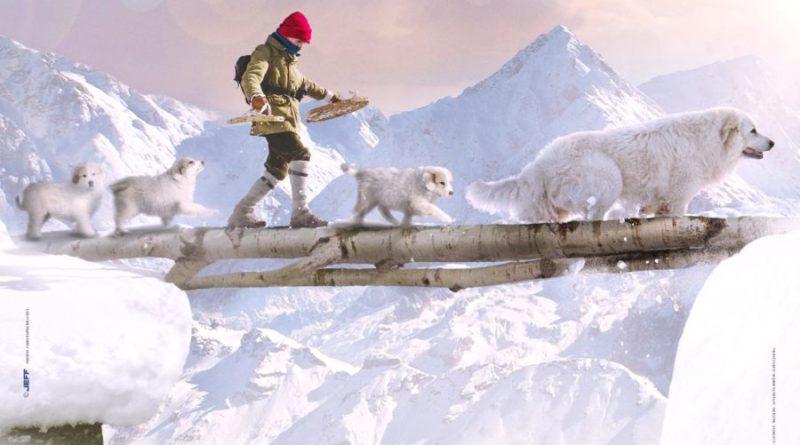 Al cinema dal 22 febbraio Belle & Sebastien – Amici per sempre (trailer)