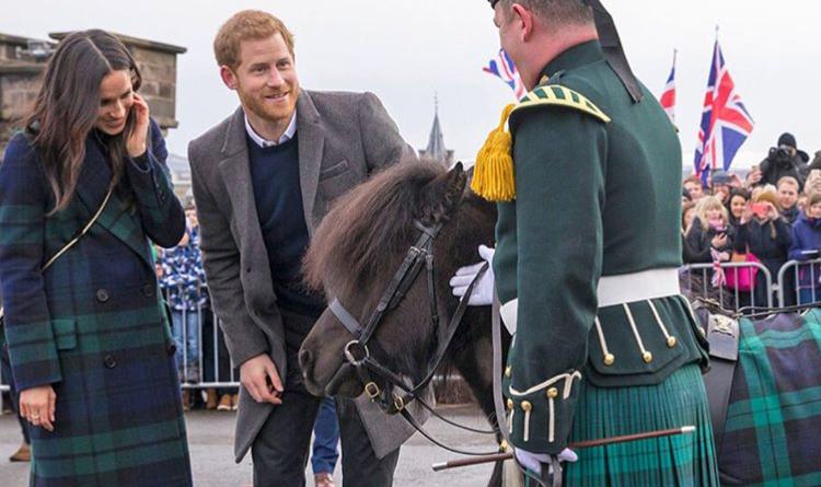 Il momento in cui il principe Harry fu quasi morso... da un pony! (video)