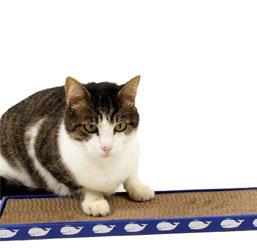 griffoir chat de 130 references a