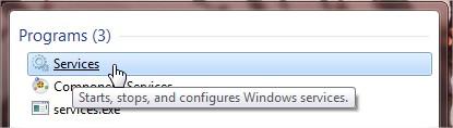 servizi-windows