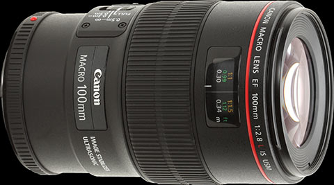 Recensione Canon EF 100mm F/2.8L Macro IS USM