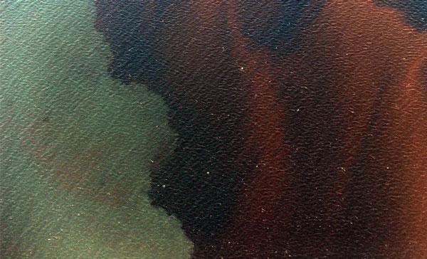 Marea Nera: Report Fotografico dal Golfo del Messico