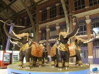 petit_elephant