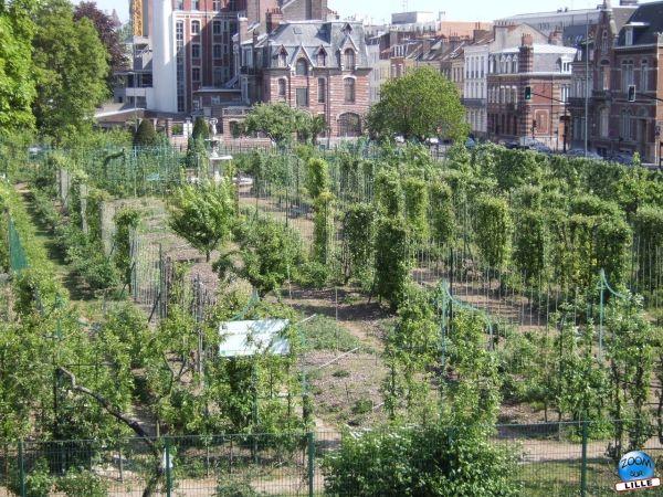 Parcs et jardins for Jardin oriente est