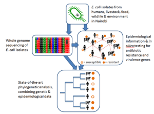 Genetics component