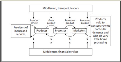 Value chains schematic diagram