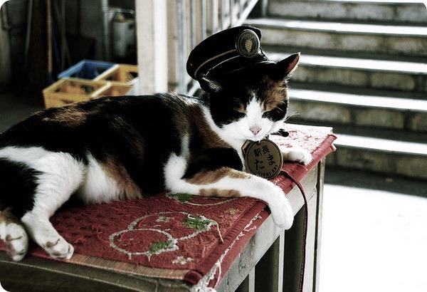 Усатый начальник железнодорожной станции