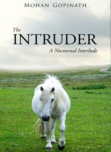 The Intruder: A Nocturnal Interlude