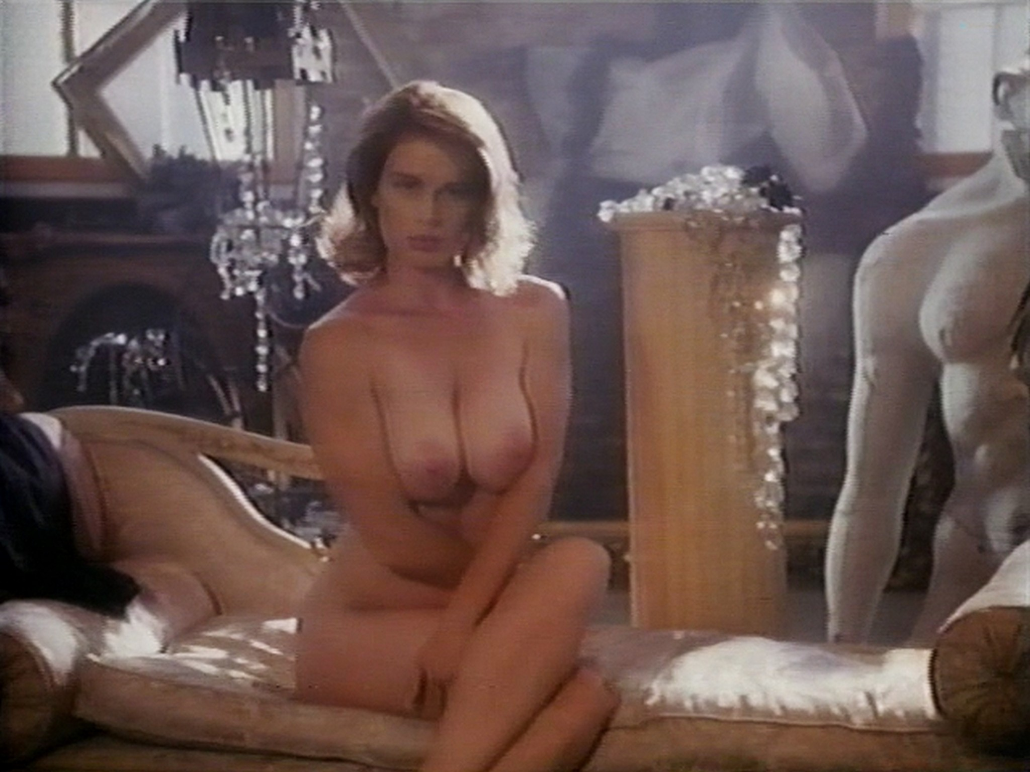 Shannon Whirry nude Elizabeth Sandifer and Shannon McLeod all nude and sex in - Animal Instincts II (1994) (6)
