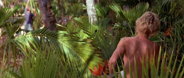 Anne Heche hot, wet bikini and c-true Jacqueline Obradors hot - Six Days Seven Nights (1998) HD1080p WEB (7)