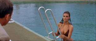 Raquel Welch hot and wet Christine Todd nude topless - Lady in Cement (1968) HD 1080p BluRay