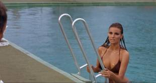 Raquel Welch hot and wet Christine Todd nude topless - Lady in Cement (1968) HD 1080p BluRay (4)