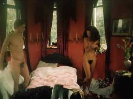 Cécile Zervudacki nude full frontal and hot sex - Save and Protect (RU-1989)