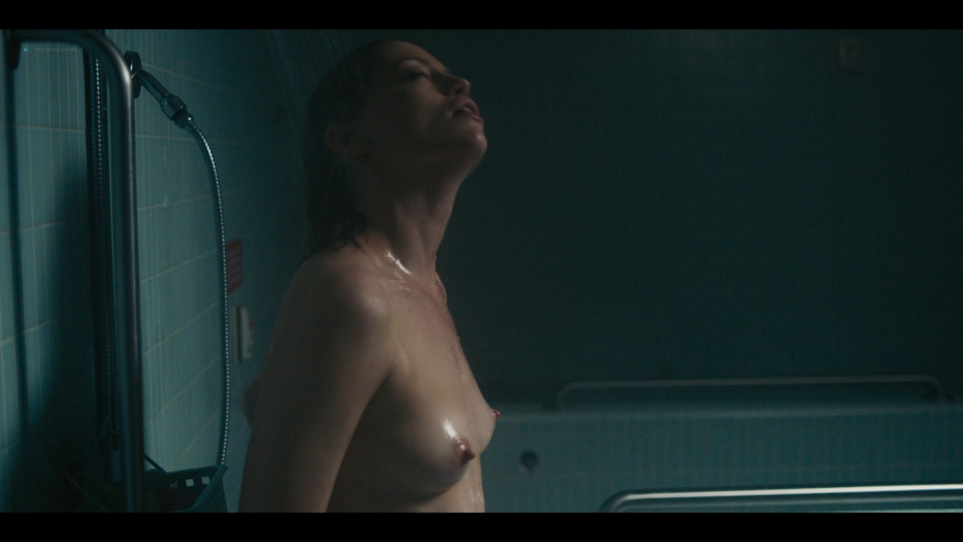 Christie Herring nude full frontal in the shower - Bloodline (2019) 1080p (5)