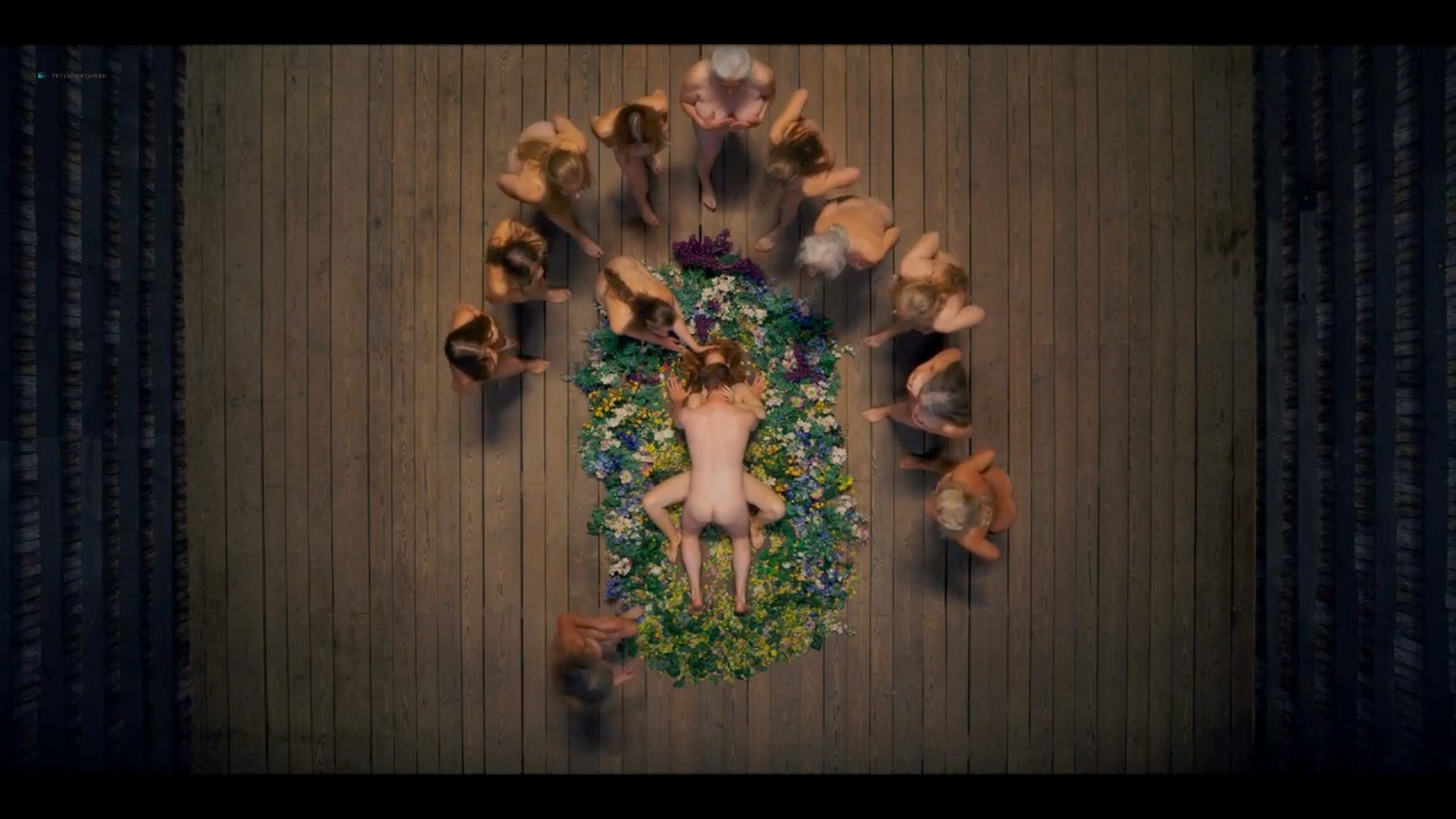 Isabelle Grill nude sex others nude full frontal - Midsommar (2019) HD 1080p Web (4)