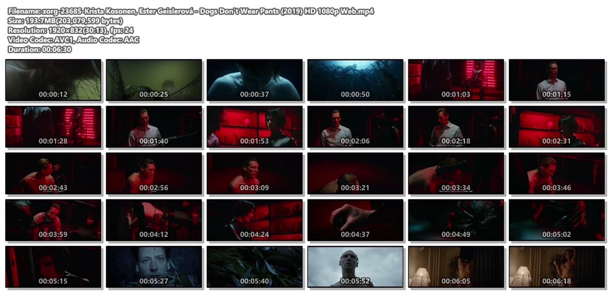 Krista Kosonen hot Ester Geislerová nude - Dogs Don't Wear Pants (2019) HD 1080p Web (1)