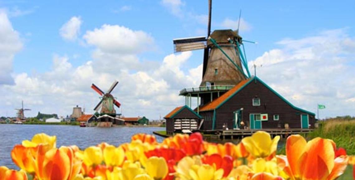 Jardim de tulipas, em Amsterdã